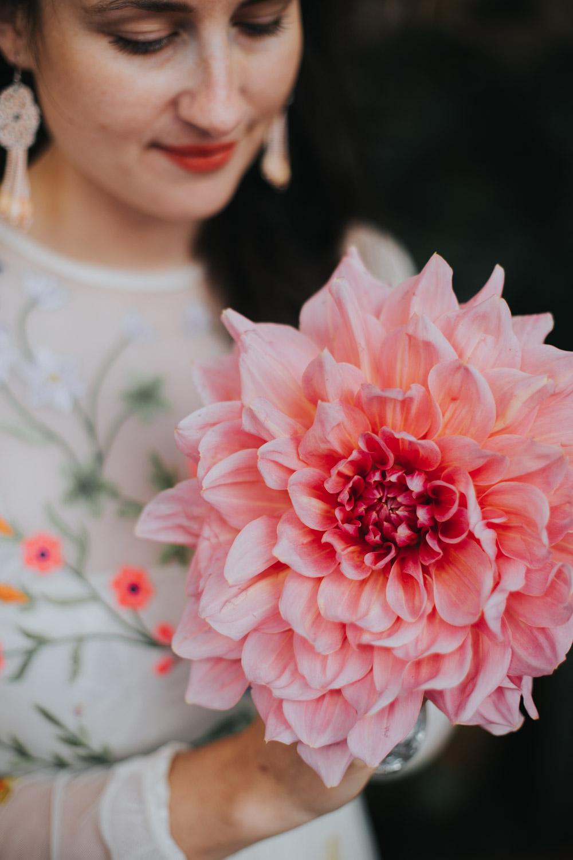 Close-up van grote roze bloem