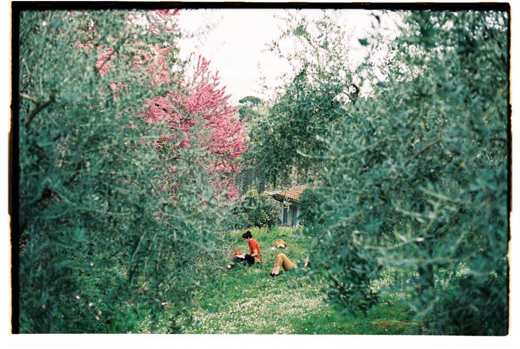 vrouwen tekenen in olijfgaard in florence, italie