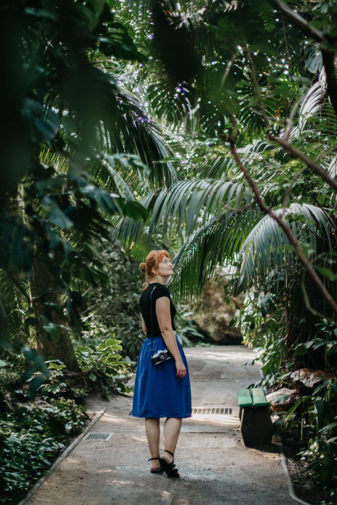 vrouw loopt door palmhuis in poznan, polen