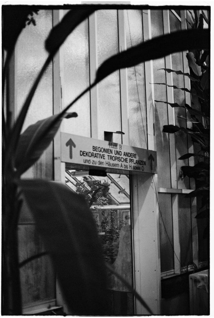botanische tuin in berlijn in zwartwit
